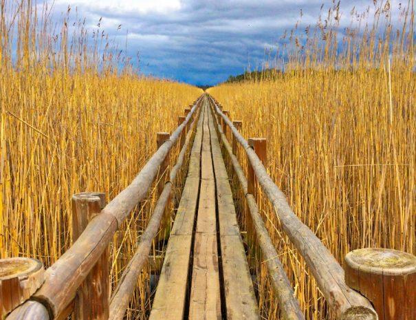 Kanieris Lake trail