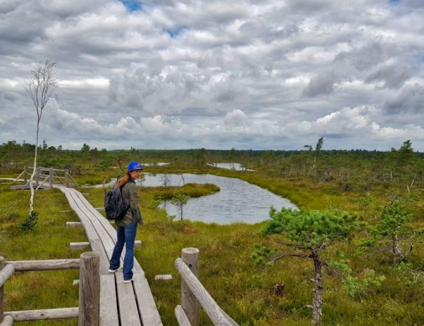 Kemeri Great Bog trail 01