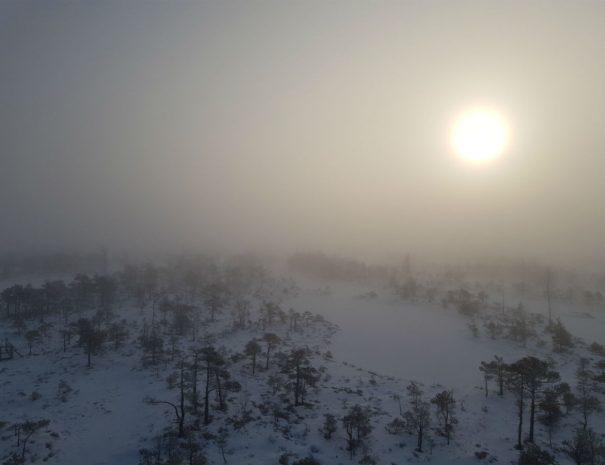 Kemeri National Park In Winter 05 Escaperies