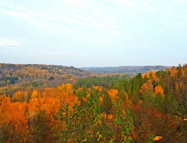 Gauja National Park in Autumn 02 _ Escaperies _ i-Da Adventures