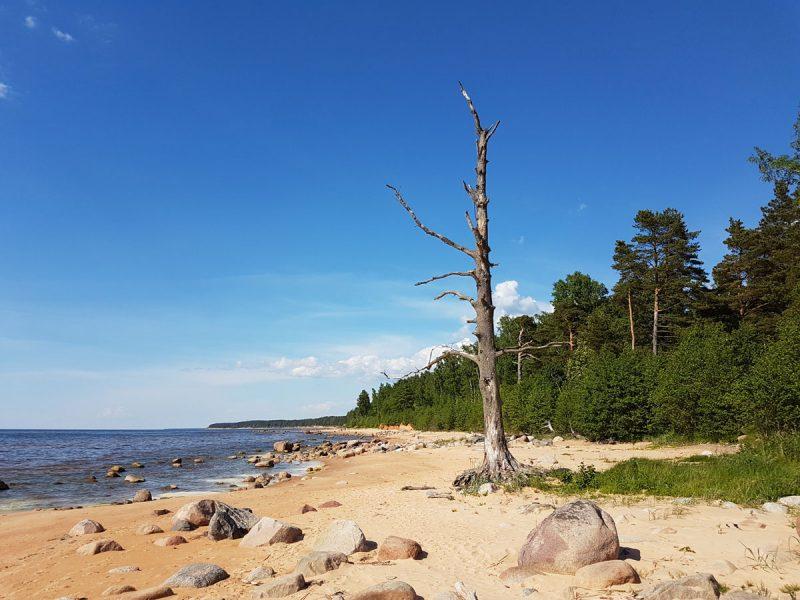 Latvia travel nature idaadventures