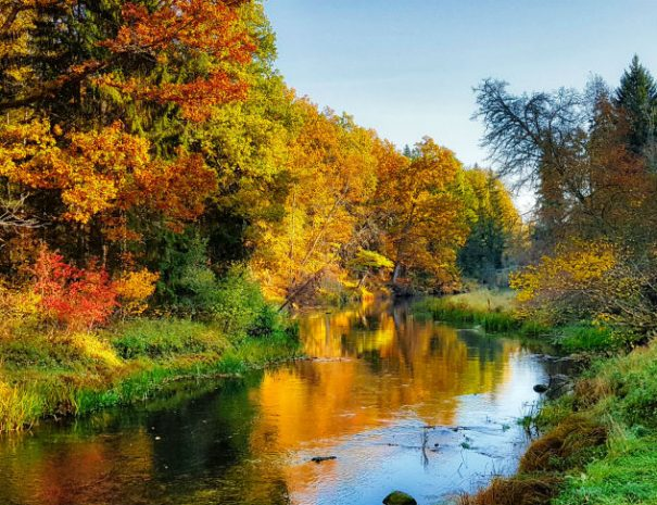 Abava river valley autumn 02 _ Escaperies _ i-Da Adventures