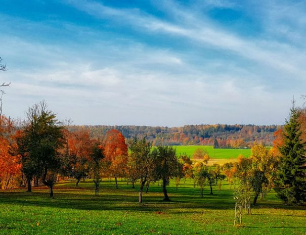 Abava river valley autumn _ Escaperies _ i-Da Adventures
