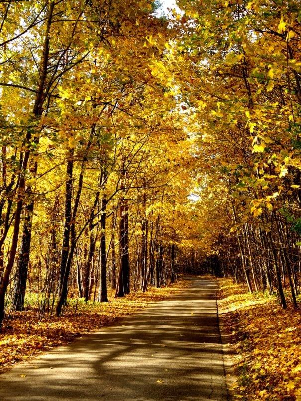 Latvia travel autumn idaadventures