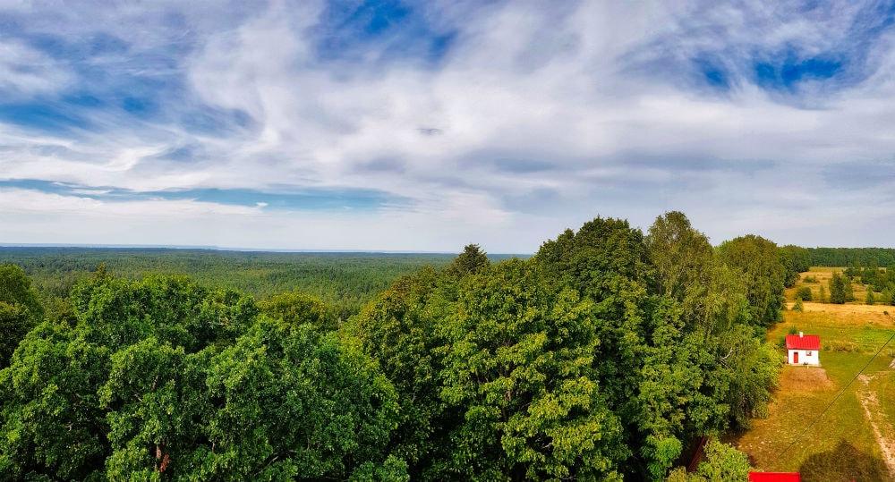 Slitere National Park _ Forests _ Escaperies