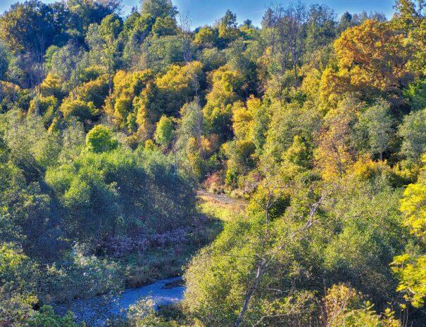 Abava River Valley - Imula